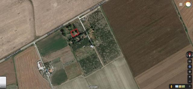 Terreno Agricolo Valle del Mignone
